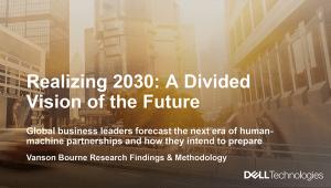 Realizing-2030