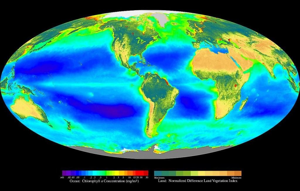 Seawifs global biosphere