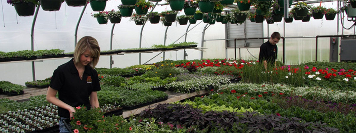 horticulture bs you ll actually want to get your hands dirty as you
