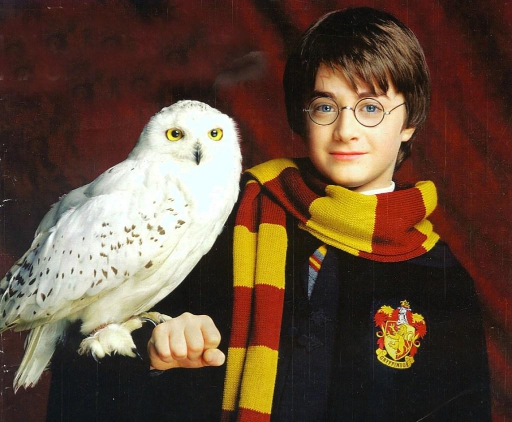 Secretaría de Cultura de San Luis Potosí informan que, por causas de fuerza mayor, se tiene que volver a posponer el Concierto Sinfónico Harry Potter