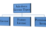 salesforce licence types