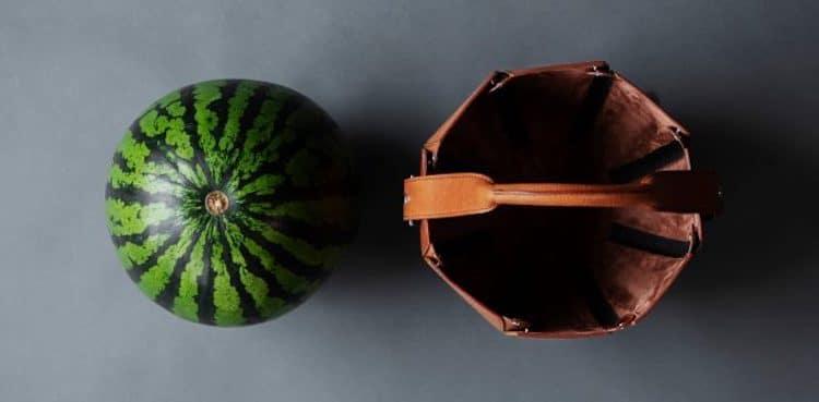 specijalno-dizajnirana-torba-za-lubenica-idealna-za-leto-vo-makedonija-foto05.jpg
