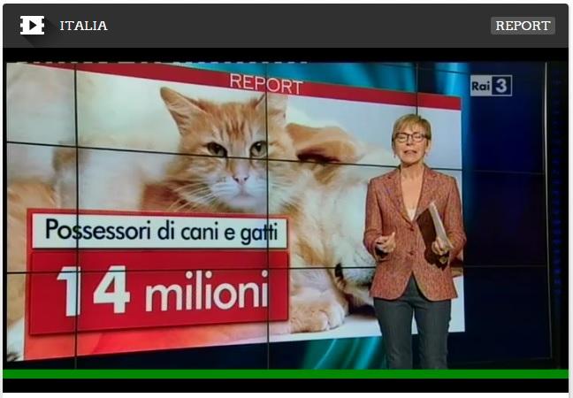 trasmissione report crocchette per animali