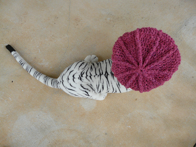 newsboy crochet hat on a tiger