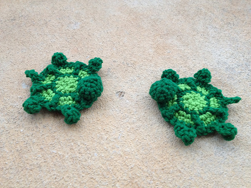Two formerly headless turtles waiting to become hexagons