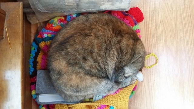 cat nap, crochetbug, crochet purse, granny square purse, crochet squares, crochet fat bag, granny square fat bag