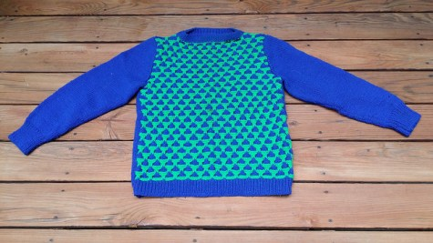A blue and green sweater