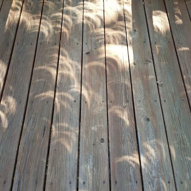 crochetbug, August 2017 eclipse,