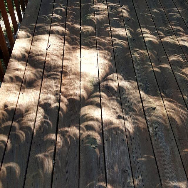 crochetbug, August 2017 eclipse