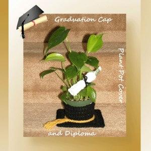 Graduation Cap Plant Pot Cover and Diploma