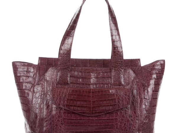 Nancy Gonzalez Crocodile bag