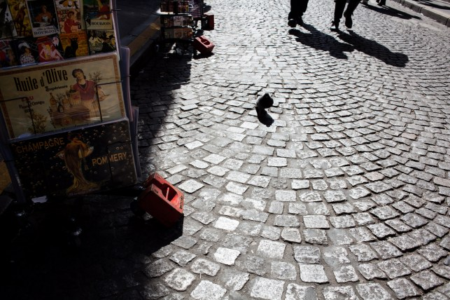 Paris__by_kingmouf-6