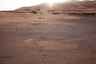 Morocco_Apr15__by_kingmouf-325