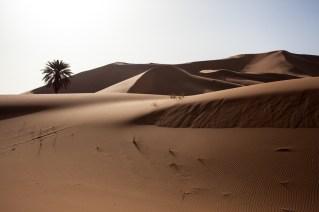 Morocco_Apr15__by_kingmouf-337