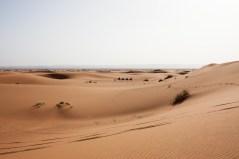 Morocco_Apr15__by_kingmouf-345