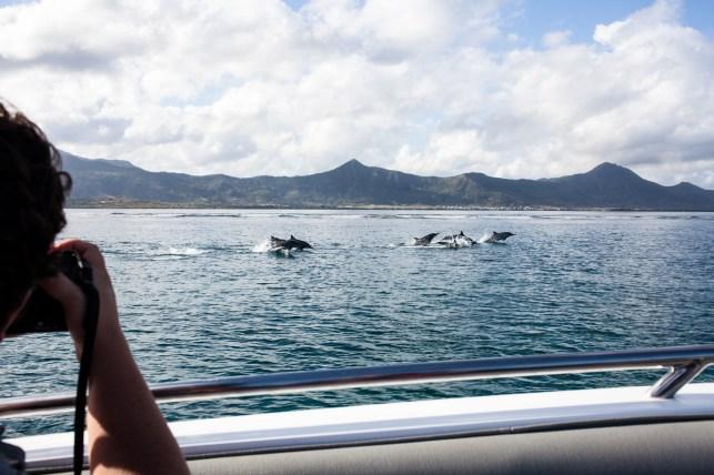 Mauritius__by_kingmouf-57