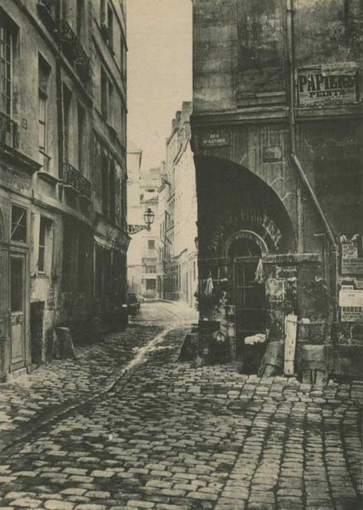 Rue Marmosets