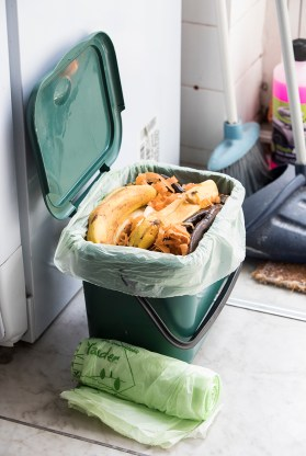 Compostable Caddy Liner for Food Waste Management Strategies
