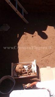 scheletro 1