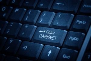 Dark web, traffico di carte di credito da 530 milioni di dollari: arresti in 16 Paesi