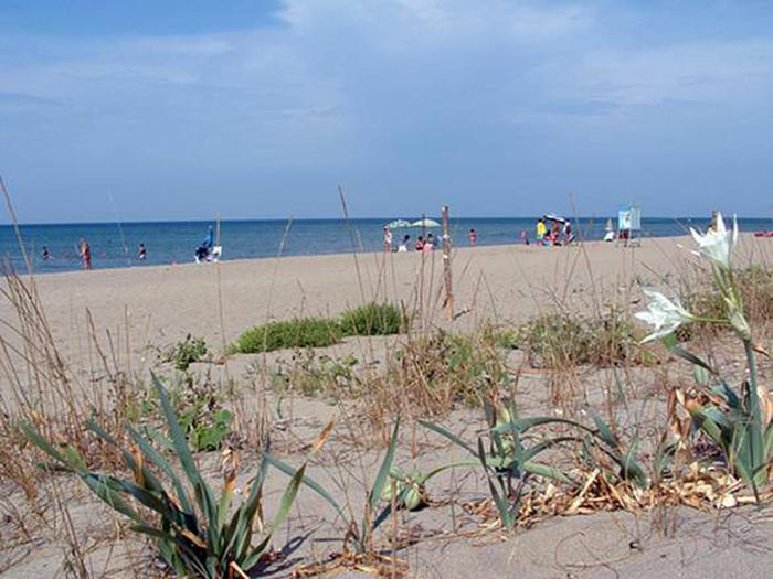 Salerno, macabra scoperta sul litorale: studenti trovano cadavere di una donna