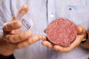 La carne sintetica è fantascienza? Ora è realtà, ma i costi...