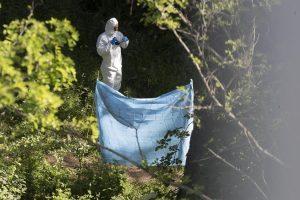 Roma, trovato il cadavere carbonizzato di una donna nel parco delle Tre Fontane all'Eur