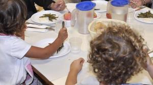 Pescara, 80 bambini in ospedale: sospetto intossicazione. Il sindaco chiude tutte le mense scolastiche