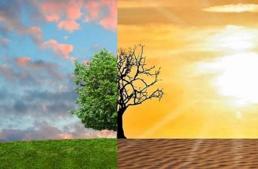 Clima, la Ue ci mette mille miliardi. BlackRock: cambia il colore dei soldi