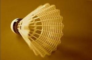 Nuovi successi per il Badminton di Ossona