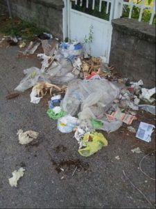 Ossona, via Patrioti senza pace ma con la spazzatura