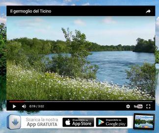appticino Anche il Ticino ha la sua app per smartphone ambiente Piazza Litta Prima Pagina