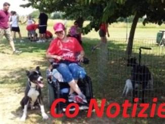 """doggy-1 Il centro cinofilo di cascina Bozza, ad Albairate, incanta i bambini dell'oratorio di Cerello e i ragazzi speciali di """"Anchio onlus"""" Corbetta"""