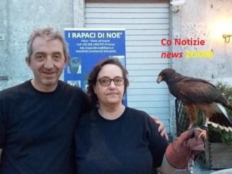 """rapaci-1 Falconeria protagonista a """"Negozi sotto le stelle"""", a Magenta Magenta Magentino Spettacoli"""