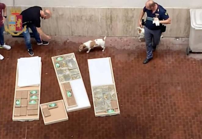 sequestro 46chilogrammi cocaina