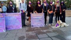 Activistas de la ONG Miles, protestas frente al palacio de gobierno.