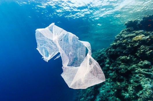 Resultado de imagen de bolsas de plástico en el mar
