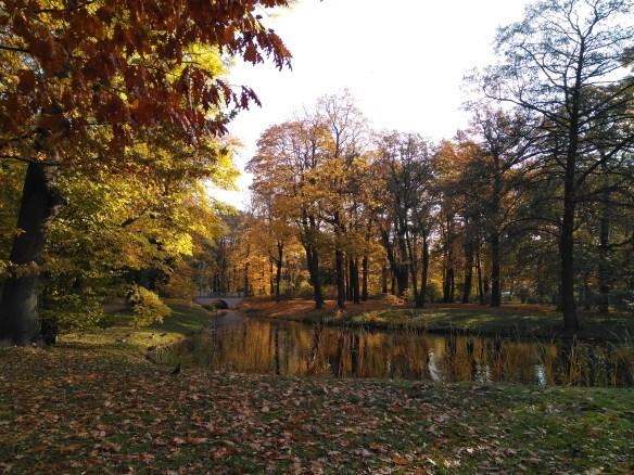 Qué ver en Varsovia en un día. Parque Lazienki.
