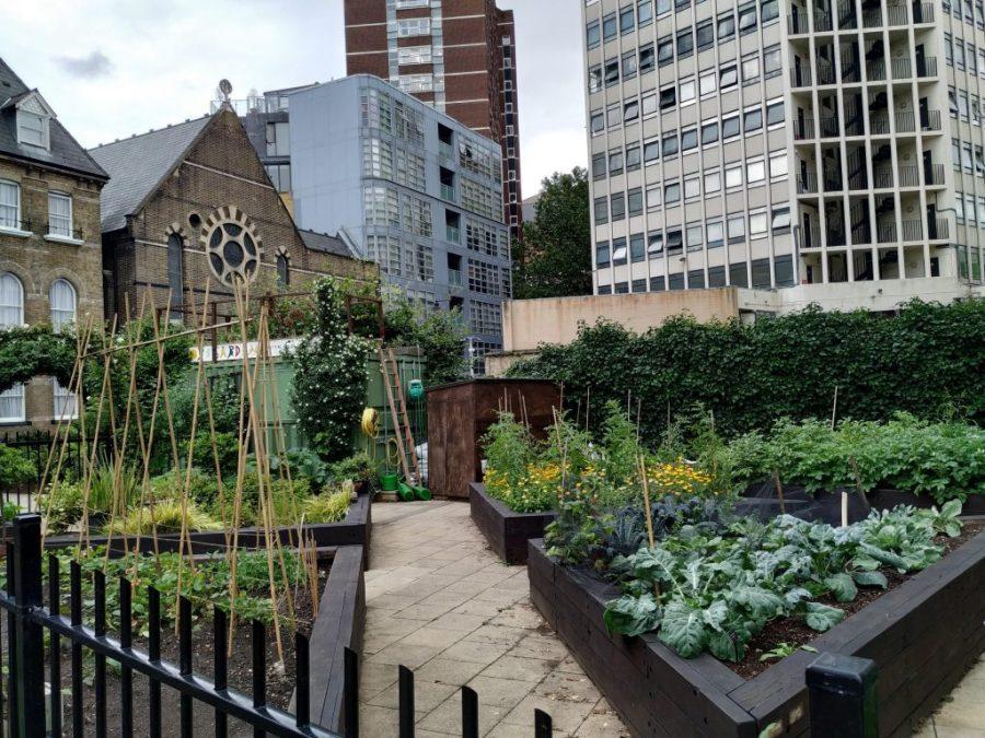 Lugares alternativos de Londres. Jardín comuniario.