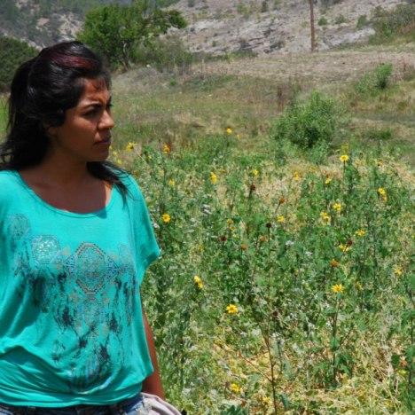 Sonora: identidad fragmentada y patrimonio huérfano
