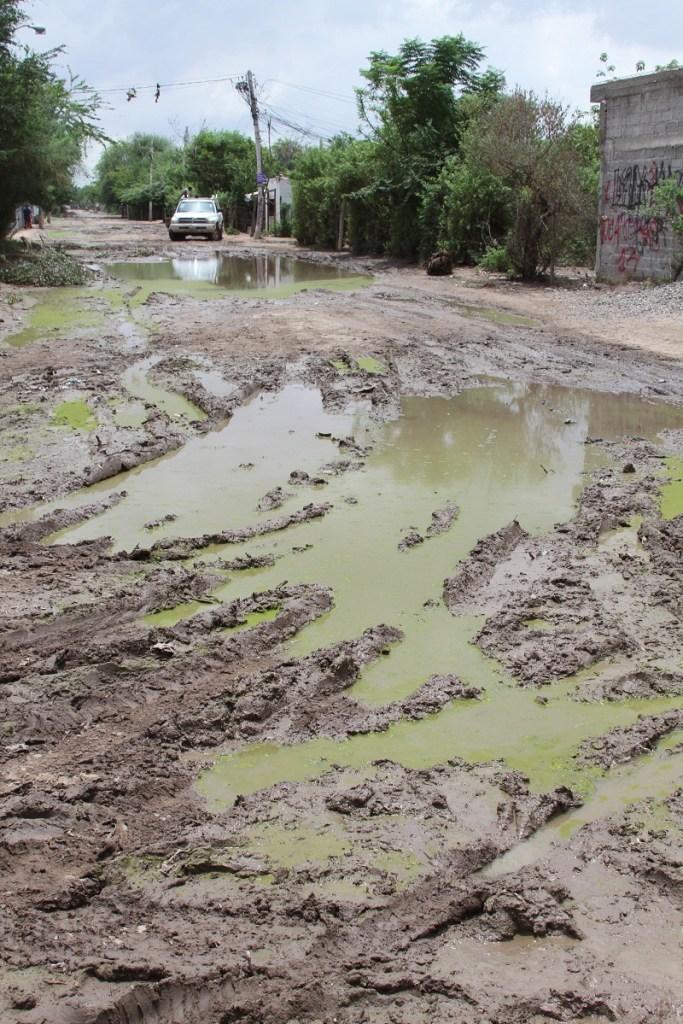 """los problemas de inundaci—n delincuencia encharcamientos y energ'a robada es mas comœn en las colonias COLOSIO Y VI""""EDO"""