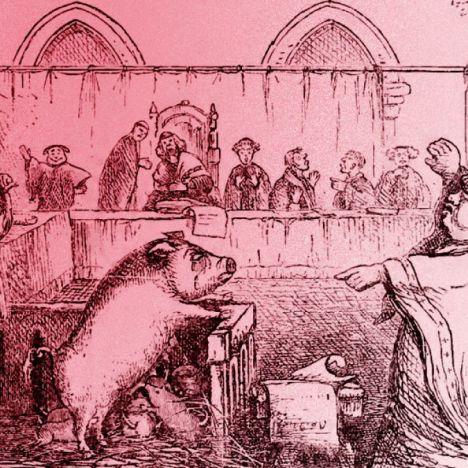 """""""¡Asco, si tú eres satánico!"""": el asunto del aborto y la polisémica Holy Bible"""