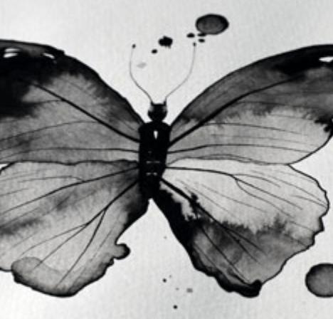 La filosofía y la Cuarta Transformación