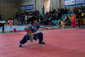 Campeonato Nacional Wushu