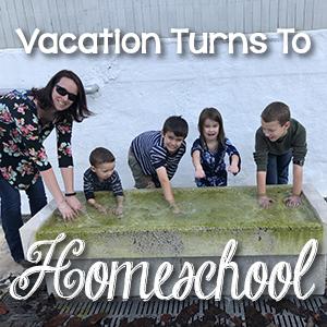 Vacation turns into homeschool