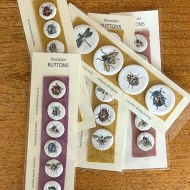 caroline barnes ceramic buttons insects