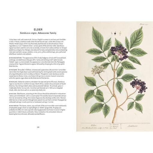 The Herbal Heritage - Sonya Patel Ellis