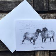 Salina Jane Art Greeting Cards - Gotland Sheep