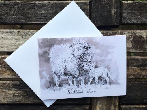 Salina Jane Art Greeting Cards - Shetland Sheep