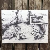 Salina Jane Art Greetings Card - Magik wants a belly rub
